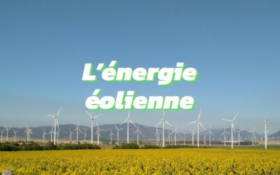 Tout ce que vous devez savoir sur l'énergie éolienne