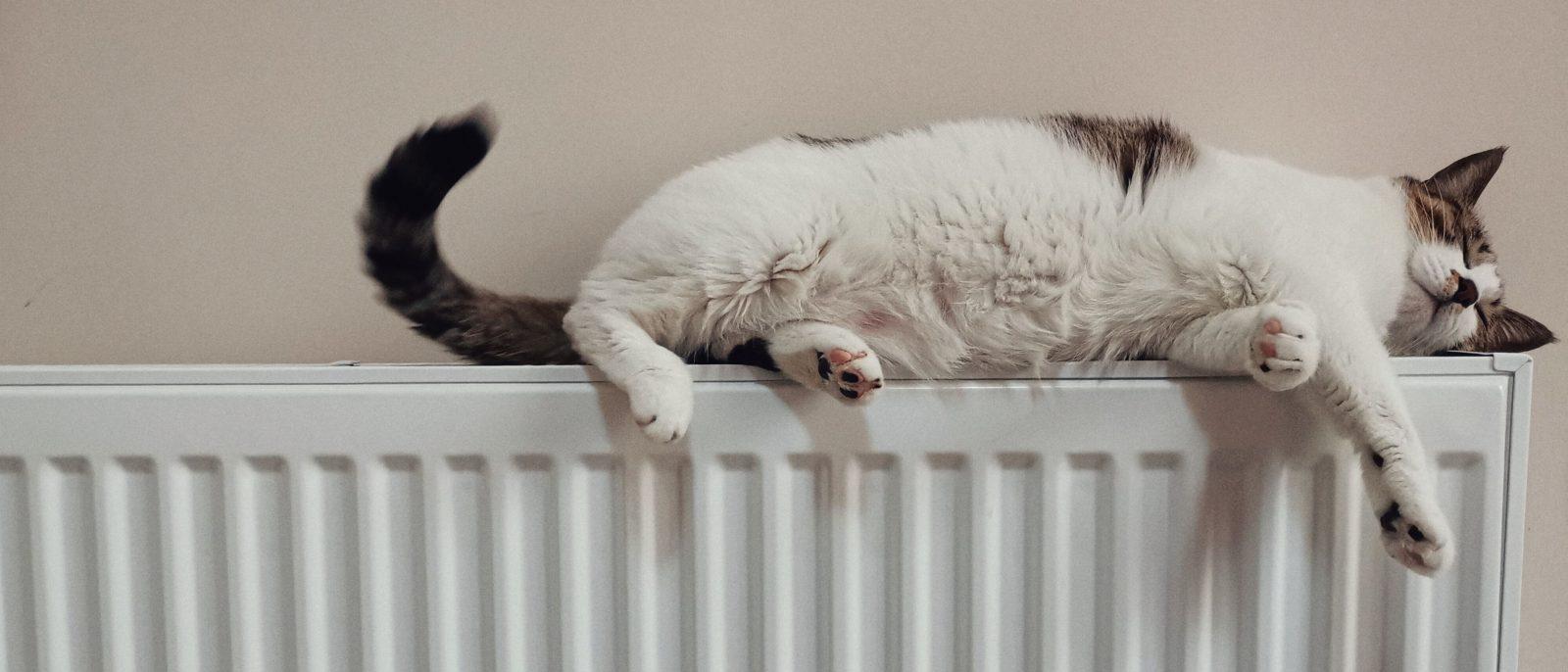 Comment mieux maîtriser le chauffage de son logement pour limiter les dépenses énergétiques