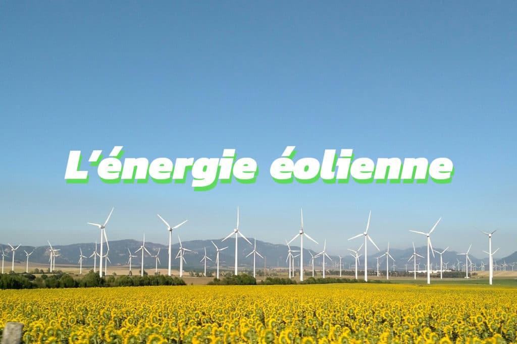 Tout savoir sur l'énergie éolienne