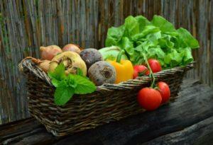 comment parler climat à ma famille - changer d'alimentation