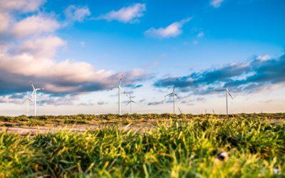 Consommer vert c'est aussi réduire son bilan carbone