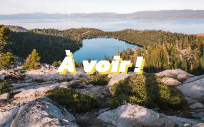 Notre sélection de films et documentaires sur l'environnement