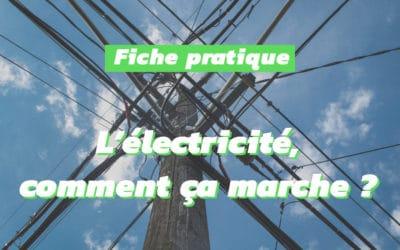 Le marché de l'électricité : entre flux physiques et conventions