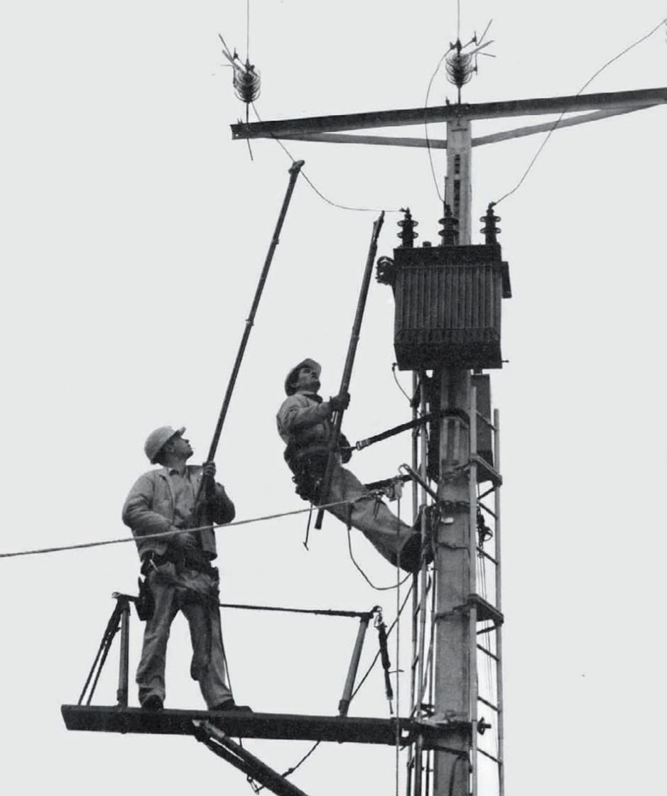 Le développement rapide et intense des réseaux électriques français et européens.