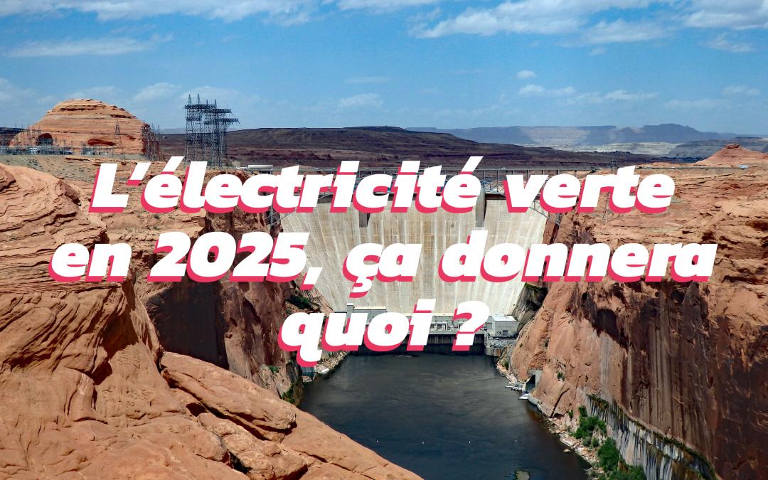 Quel avenir pour les énergies renouvelables d'ici 2025 ?