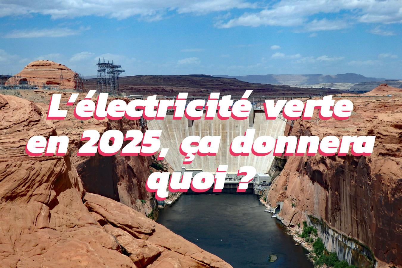 Les projections de l'AIE sur le développement des énergies renouvelables d'ici 2025