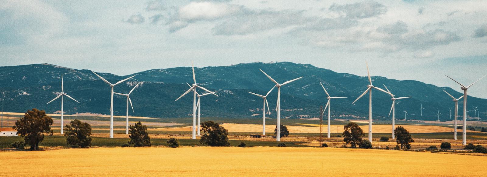 le renouvelable plus rentable que le charbon
