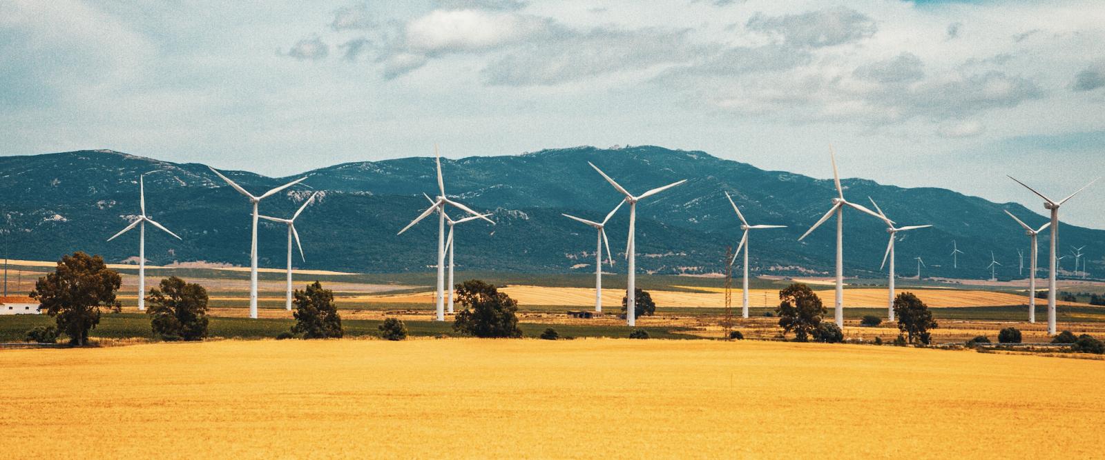 la traçabilité sur le marché de l'électricité