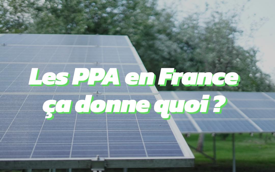 Zoom sur le marché français des PPA